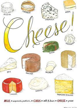 Cheese by Marcella Kriebel