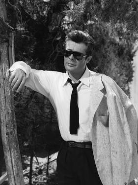 Marcello Mastroianni, La Dolce Vita, Federico Fellini, 1960 (b/w photo) (b/w photo)