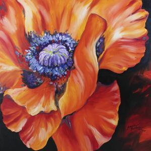Heart of a Red Poppy by Marcia Baldwin