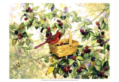 Berry Picker