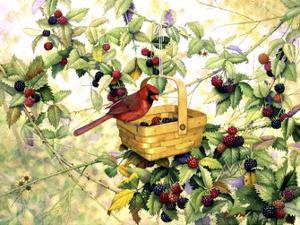 Berry Picker by Marcia Matcham