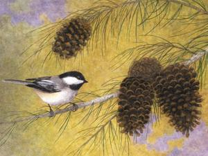 Chickadee in the Pines I by Marcia Matcham