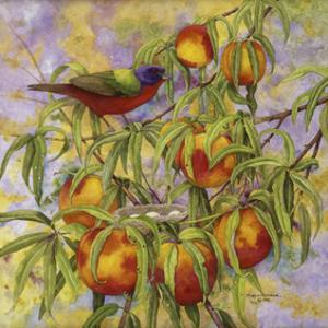 Painted Bunting & Peaches by Marcia Matcham