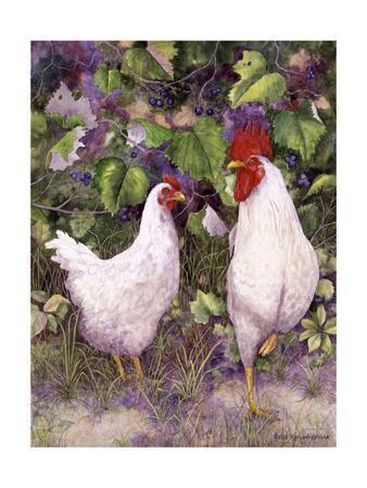 Roosters en Place IV
