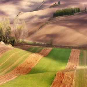 Autumn on Fields by Marcin Sobas