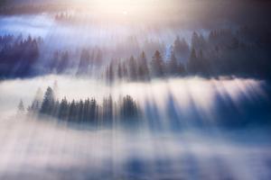 Dream by Marcin Sobas