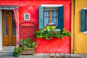 Flowers in Burano by Marco Carmassi