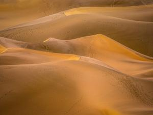 Gold Desert by Marco Carmassi