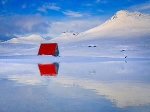 Red Loneliness by Marco Carmassi