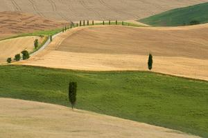 Tuscany Land by Marco Carmassi