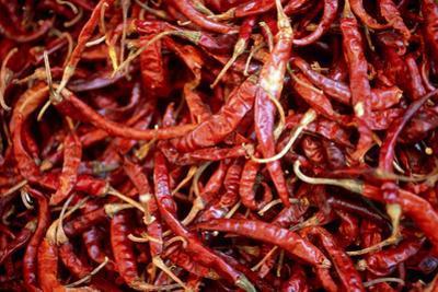 Red Chili Peppers (Ocotlan Market, Oaxaca, Mexico) by Marco Cristofori