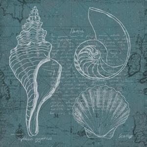Coastal Blueprint I by Marco Fabiano
