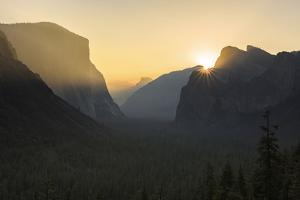 Golden Light in the Yosemite National Park, California by Marco Isler