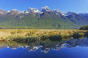 Lake Matheson Reflections, Fiordland National Park, Milford Sound, South Island, New Zealand by Marco Simoni
