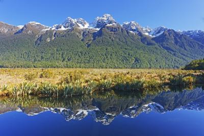 Lake Matheson Reflections, Fiordland National Park, Milford Sound, South Island, New Zealand