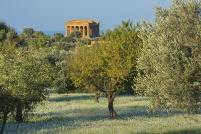 Temple of Concordia, Valley of the Temples, Agrigento, Sicily, Italy