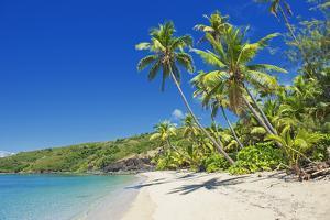 Tropical Beach, Drawaqa Island, Yasawa Island Group, Fiji, South Pacific Islands, Pacific by Marco Simoni