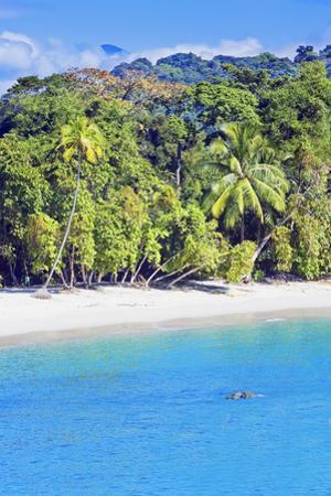 Tropical Beach, Manuel Antonio National Park, Costa Rica