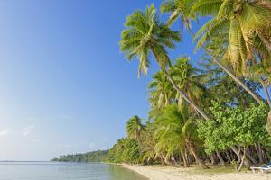 Tropical Beach, Nanuya Lailai Island, Yasawa Island Group, Fiji, South Pacific Islands, Pacific by Marco Simoni