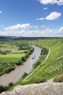 Hessigheim Felsengarten (Rock Gardens), Neckartal Valley, River Neckar by Marcus Lange