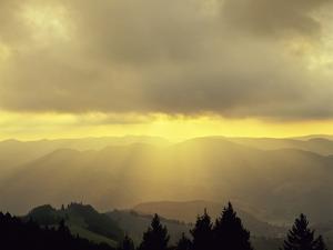 Sunrise on Belchen Mountain, Black Forest, Baden Wurttemberg, Germany, Europe by Marcus Lange