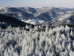 View from Hohlohturm Tower over Northern Black Forest by Marcus Lange