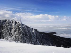 View from Kandel Mountain, Black Forest, Baden Wurttemberg, Germany, Europe by Marcus Lange
