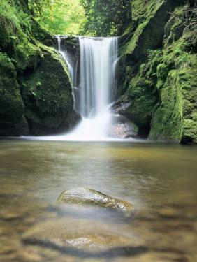 Waterfall Geroldsau, Near Baden Baden, Black Forest, Baden Wurttemberg, Germany, Europe by Marcus Lange