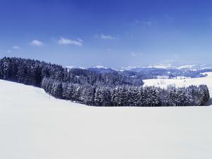 Winter Landscape, Glottertal Valley, Black Forest, Baden Wurttemberg, Germany, Europe by Marcus Lange