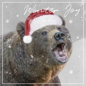 Winter Joy by Marcus Prime