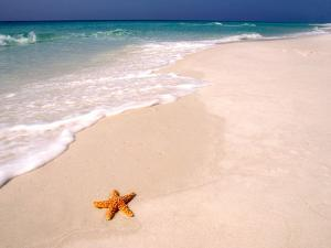 Gulf Island National Seashore, Santa Rosa Island, Florida by Maresa Pryor
