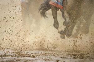 Horse racing in the mud by Maresa Pryor