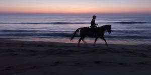 Morning ride, Vilano Beach, Florida by Maresa Pryor