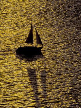 Sailing at Sunset, Ft Myers, Florida, USA by Maresa Pryor
