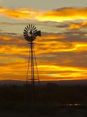 Sunrise with Windmill, Cimarron, New Mexico, USA by Maresa Pryor