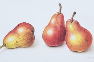 Red Pears, 1996 by Margaret Ann Eden
