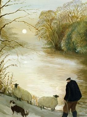 The Stray Sheep by Margaret Loxton