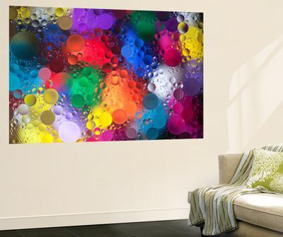Color Explosion 2 by Margaret Morgan