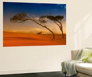 Maria Island Dream by Margaret Morgan