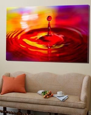 Water Drop 2 by Margaret Morgan
