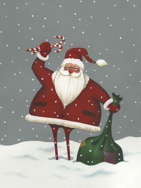 Santa's Bag of Toys by Margaret Wilson
