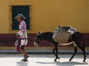 Elderly Woman Walking with Her Donkey by Margie Politzer