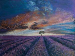Lavender fields of Normandy,  pastel by Margo Starkey