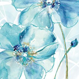Blue Spring Poppy II by Maria Donovan
