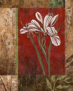 Jeweled Iris II by Maria Donovan