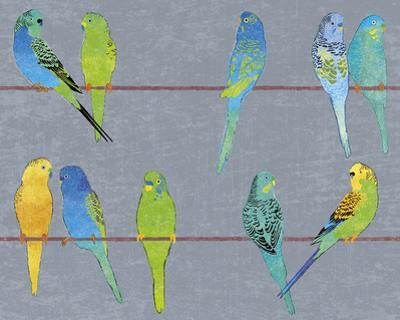 Budgies by Maria Mendez