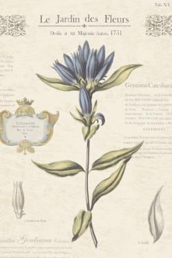 Le Jardin des Fleurs III by Maria Mendez
