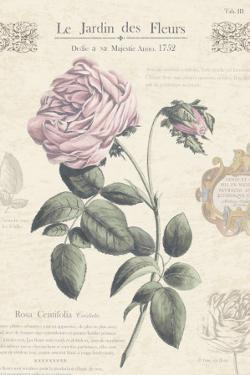 Le Jardin des Fleurs IV by Maria Mendez