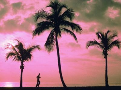 Silhouette of a Runner and Palm Trees by Maria Taglienti