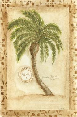 Licuala Grandis Palm by Marianne D. Cuozzo